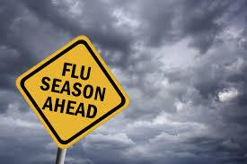 flu frugalnev